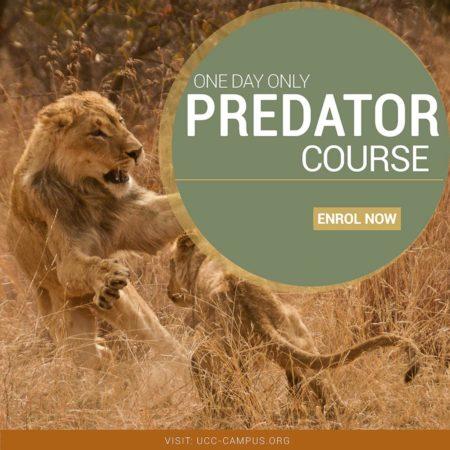 Predator Course