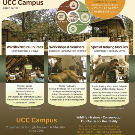 Summary of UCC Courses & Modules